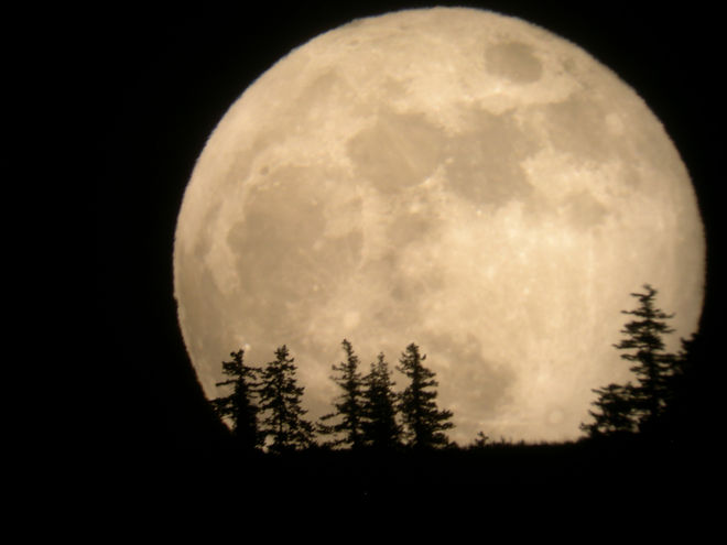 What does a Super Moon have to do with sustainability dry cleaning?